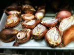 Shallots – One of Many of Pho's Critical Ingredients – Part 2